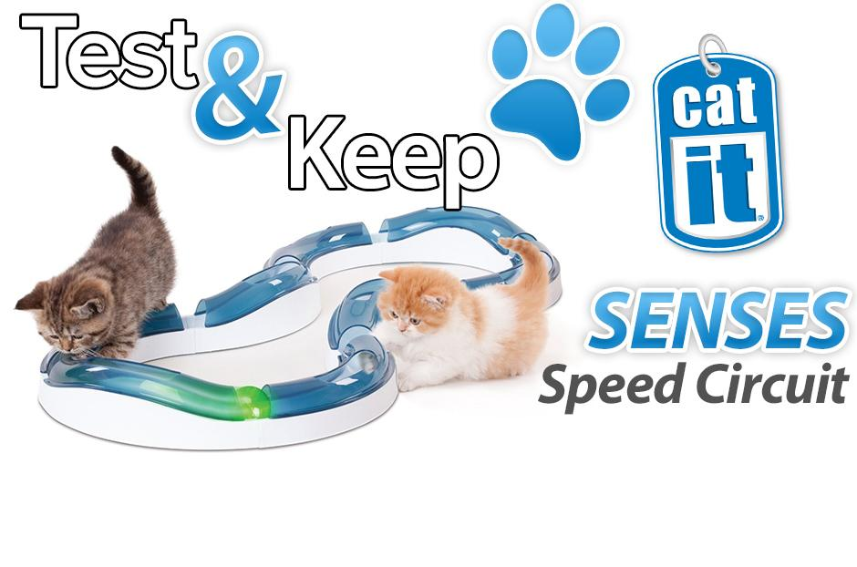 free catit speed circuit