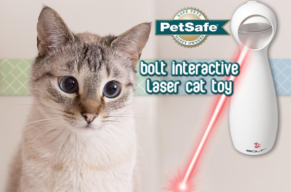 PetSafe Bolt Interactive Laser Cat Toy