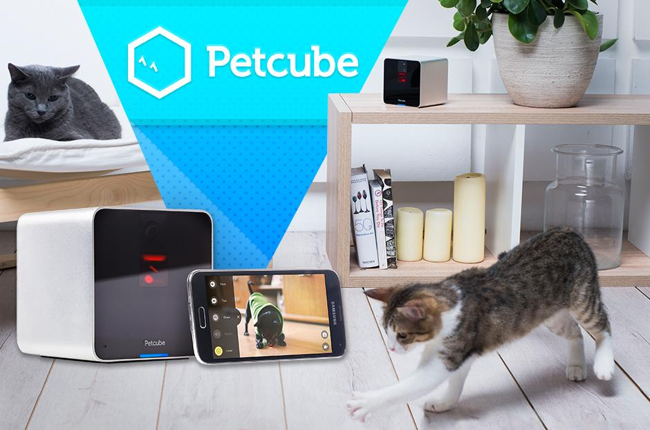 petcube play